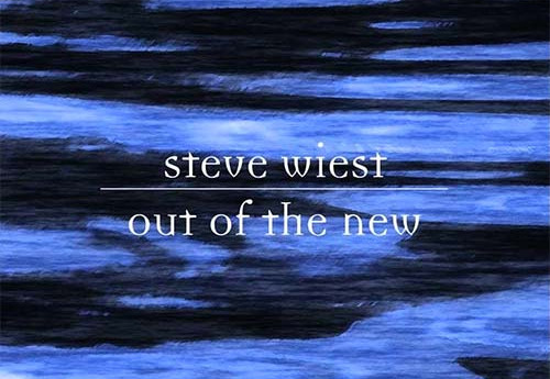 Out of the New by Steve Wiest